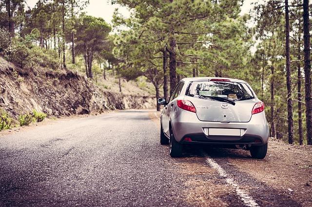 turo car rental review